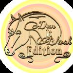 DUn It Black Edition Logo ohne hintergrund_1 (Andere)